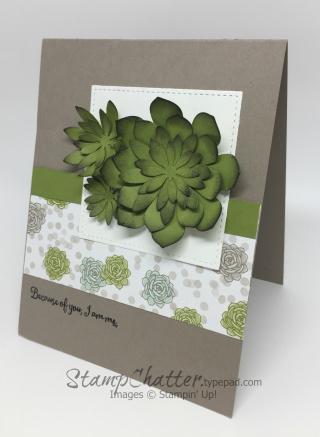 SucculentFramelits www.stampchatter.typepad